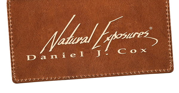 Natural Exposures logo