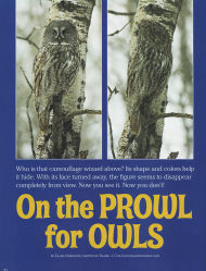 Cover of 2008 March National Wildlife