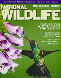Cover of 2009 June/July National Wildlife