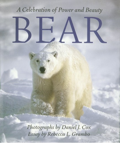 Cover of Bear: A Celebration of Power and Beauty