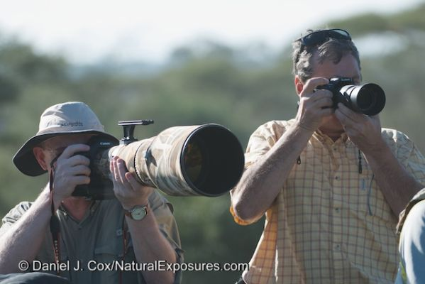 The Canon 600mm F/4 with photographer attached is on the left. On the right is me shooting the Lumix GH3 with a 100-300mm F/4-5.6 lens. In the Micro Four thirds world all lenses are multiplied 2x so the Lumix 100-300 is actually equivalent to a 200-600mm lens. The same long magnification as the massive Canon lens.