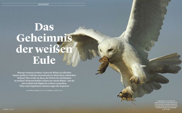 One of Dan's images that appears as a double page spread in the March issue of German Geo